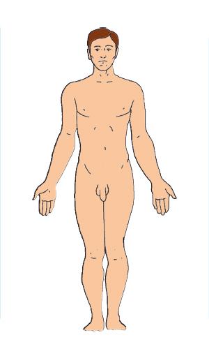 mies alasti seksuaalisuus
